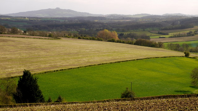 May Hill from Cherry Orchard Lane
