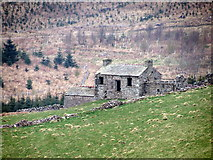 NY8509 : Woofergill ruin by Matthew Hatton