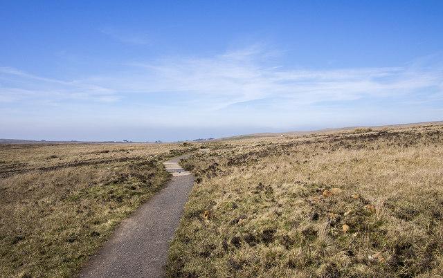 Path, Black Mountain Ridge Trail