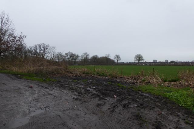 Farmland near Spurs Lodge