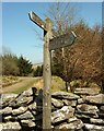 SX6575 : Signpost south of Laughter Hole Farm by Derek Harper