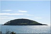 SX2551 : St George's or Looe Island by Trevor Harris