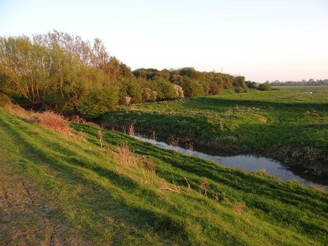 Near Swavesey Drain
