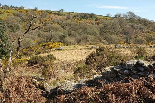 East Dart valley near Babeny