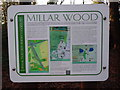 SU9094 : Display Board at Millar Wood near Potter's Cross by David Hillas