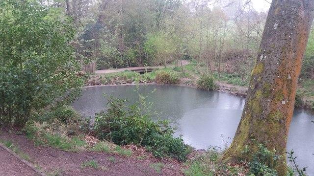 Pools at Leasowes Park