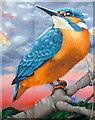 NS4863 : The Paisley Kingfisher by Thomas Nugent