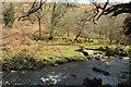SX6774 : East Dart River by Derek Harper
