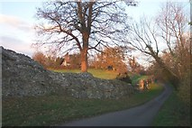 SU6462 : Silchester Roman City Walls by Chris Wood