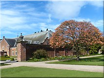 ST2885 : Acer tree, Tredegar House gardens, Newport by Robin Drayton