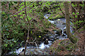 NY2625 : Applethwaite gill by Robert Eva