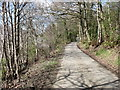 NY2525 : The lane from Applethwaite by David Purchase