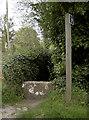 ST7759 : To Peipard's Farm by Neil Owen