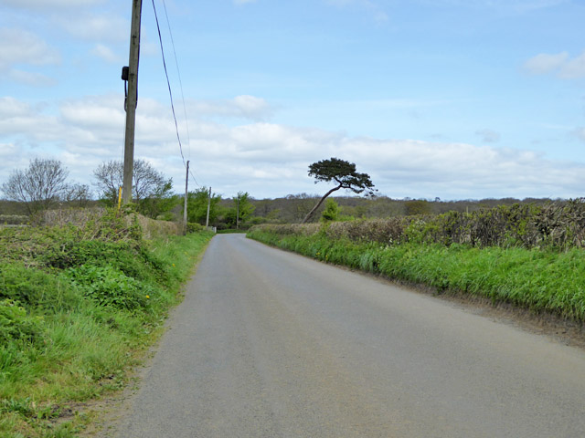 Road to Fifehead Magdalen