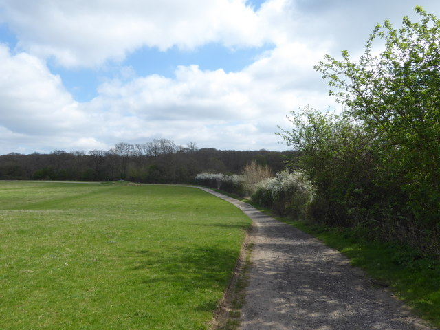 Path in Thorndon Country Park South