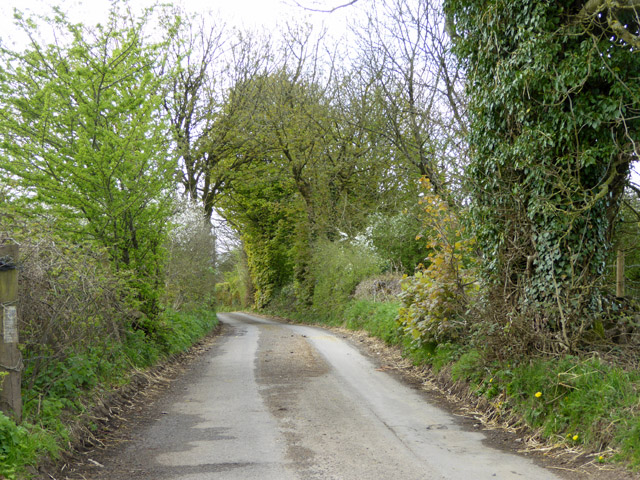 Ham Lane