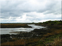 TQ8068 : Riverside Country Park, The river Medway estuary at low tide by pam fray