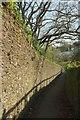 SX8060 : Leechwell Lane, Totnes by Derek Harper