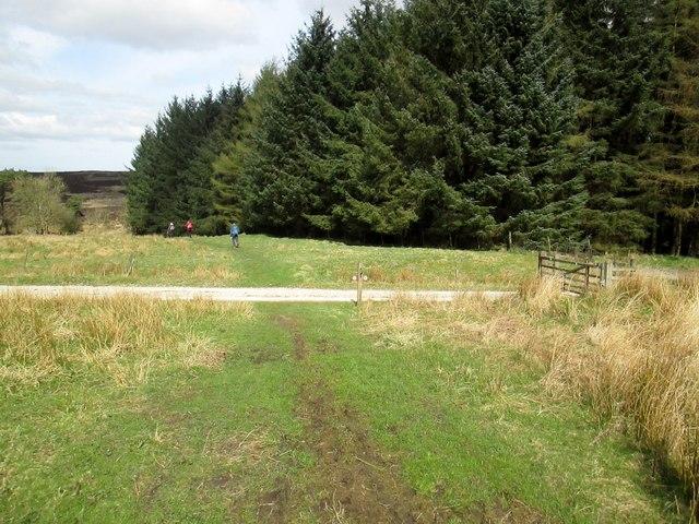 Bridleway  at  Wardle  Green
