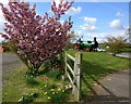 SO8577 : At the entrance to the Hodge Hill Garden Centre by Mat Fascione