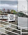 NZ2850 : Chester-le-Street: Durham defiance by John Sutton