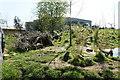 SJ4169 : Babirusa (Babyrousa sp.) enclosure at Chester Zoo by Mike Pennington