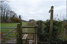 SX5756 : Footpath near Sparkford Bridge by N Chadwick