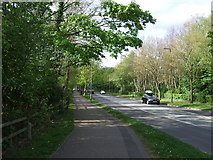 TL2512 : Dual use path beside Black Fan Road (B195) by JThomas