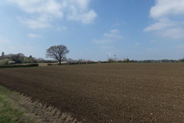 Farmland off Lovers Lane Footpath
