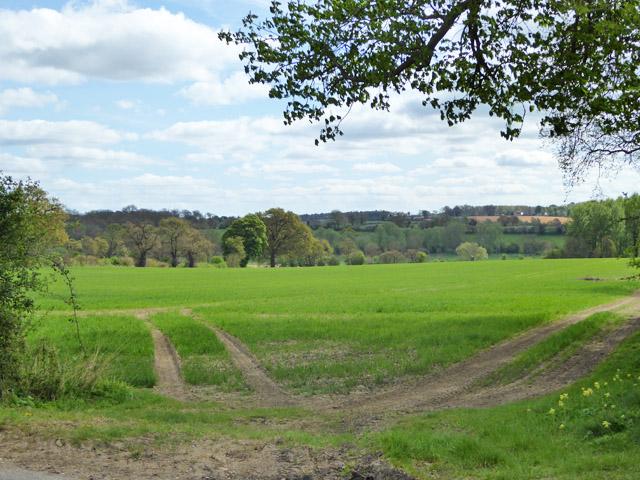 View over valley of Belchamp Brook