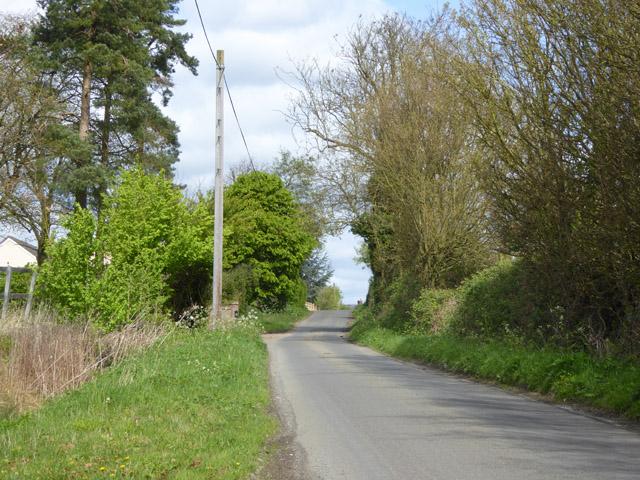 Lane towards Borley Green