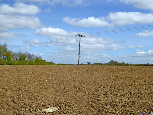 Brown field east of Long Melford bypass (A134)