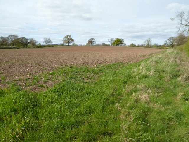 Ploughed field beside Wallhouse Lane