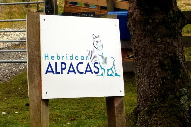 Sign for Hebridean Alpacas