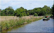 SK0120 : Trent and Mersey Canal near Bishton, Staffordshire by Roger  Kidd