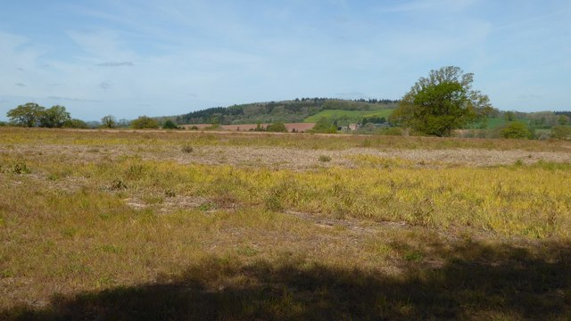 Farmland near The Nelmes