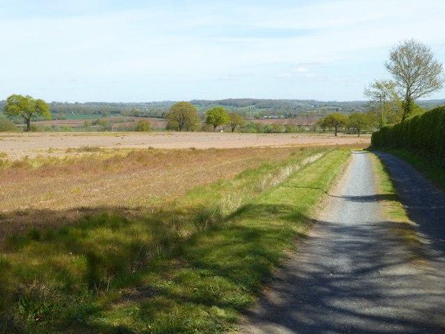 Farm road to The Nelmes