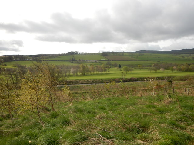 Countryside Outside Rothbury