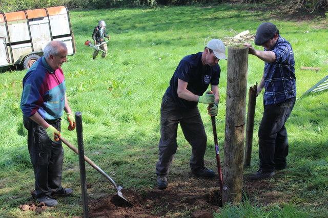 Tamping down! - erecting a gate post, Twyn Wenallt