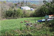SO2413 : Hillside meadow, Twyn Wenallt by M J Roscoe