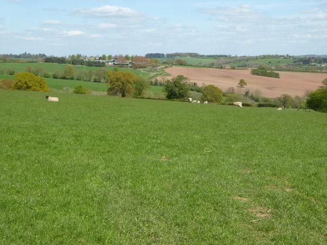 Farmland near Pencombe