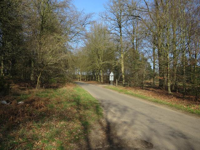 Road from Santon Downham