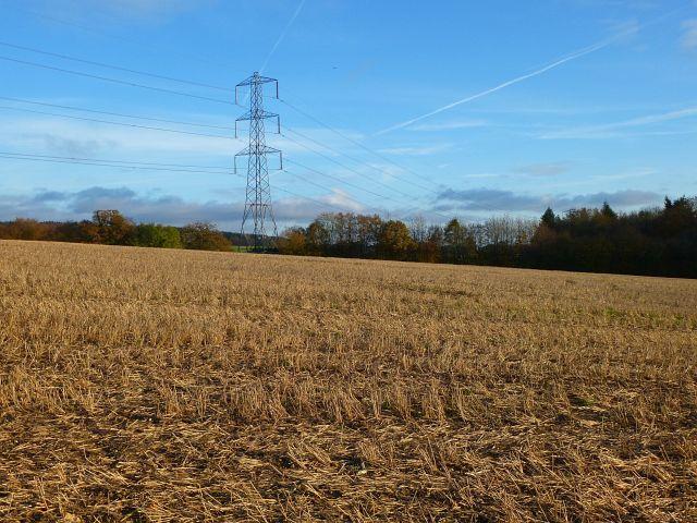 Farmland, Coleshill