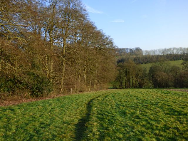 Farmland and woodland, Piddington