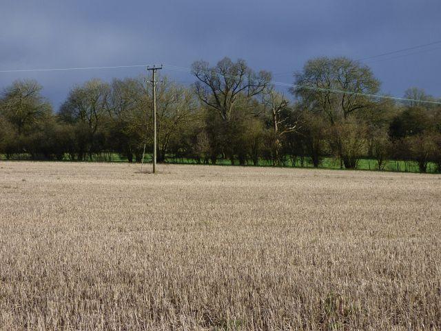 Farmland, Hughenden