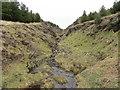NM4420 : Allt an Fhir in Scoor Forest by John Ferguson