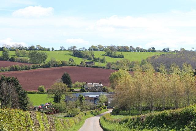 The lane to Burton in springtime