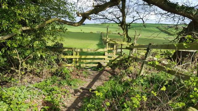 Stile on footpath between Hedley on the Hill and Mickley Moor
