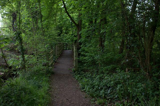 Thames path boardwalk