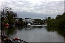 TQ0866 : River Thames near Lower Halliford by Robert Eva